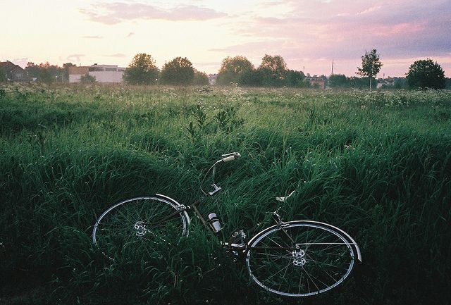 sommarmorgon 3