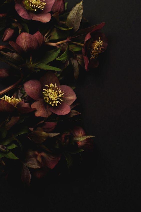 flower sept
